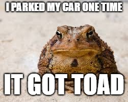 I PARKED MY CAR ONE TIME IT GOT TOAD | image tagged in grumpy toad | made w/ Imgflip meme maker