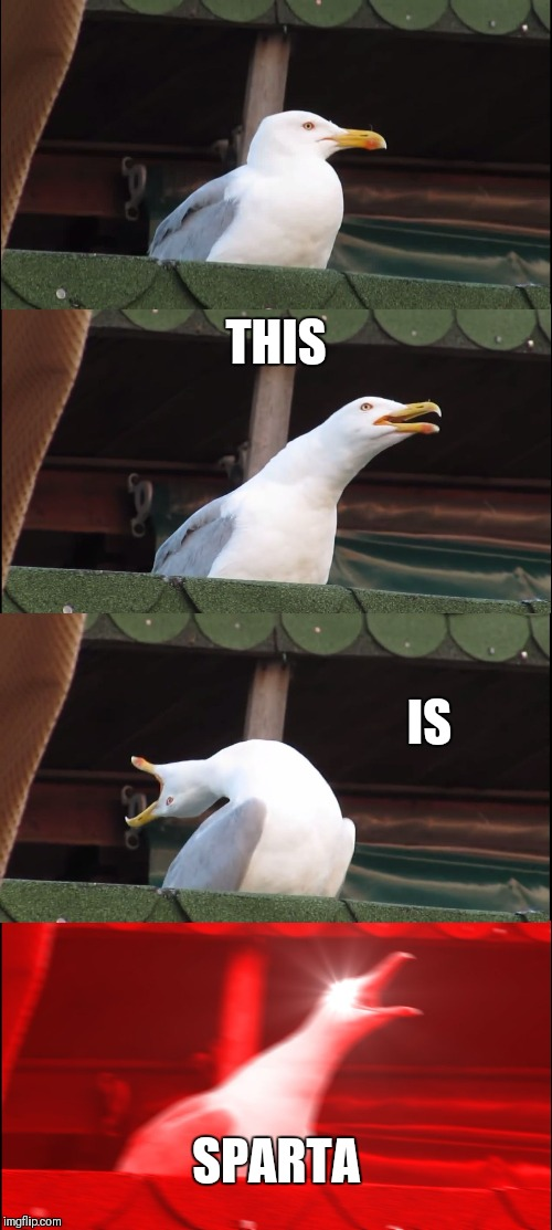 Inhaling Seagull Meme | THIS IS SPARTA | image tagged in memes,inhaling seagull | made w/ Imgflip meme maker
