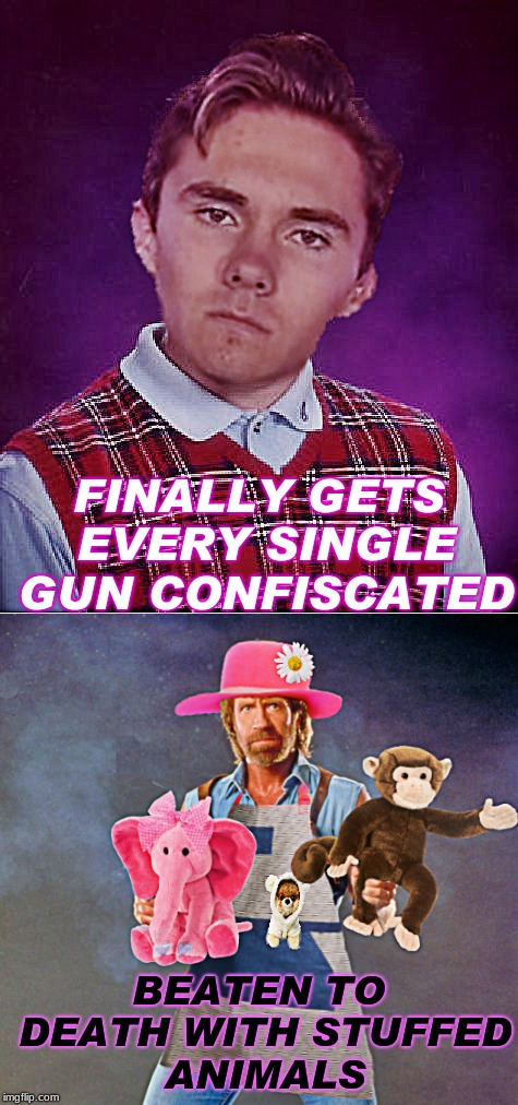 Should never have made chuck have to get a job as a nanny... |  FINALLY GETS EVERY SINGLE GUN CONFISCATED; BEATEN TO DEATH WITH STUFFED ANIMALS | image tagged in david hogg,bad luck brian,chuck norris,babysitter | made w/ Imgflip meme maker
