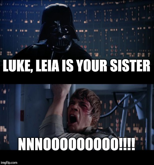 Star Wars No Meme | LUKE, LEIA IS YOUR SISTER NNNOOOOOOOOO!!!! | image tagged in memes,star wars no | made w/ Imgflip meme maker