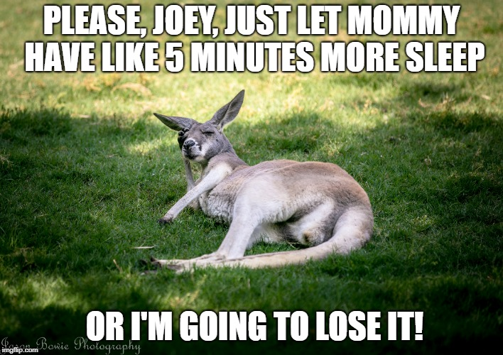 PLEASE, JOEY, JUST LET MOMMY HAVE LIKE 5 MINUTES MORE SLEEP OR I'M GOING TO LOSE IT! | image tagged in mom,sleep,tired,joey,nagging,children | made w/ Imgflip meme maker