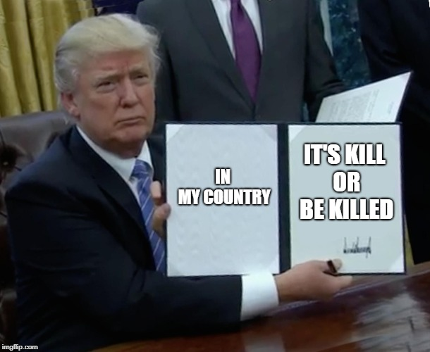 Trump Bill Signing Meme | IN MY COUNTRY IT'S KILL OR BE KILLED | image tagged in memes,trump bill signing,undertale,flowey,make donald drumpf again | made w/ Imgflip meme maker