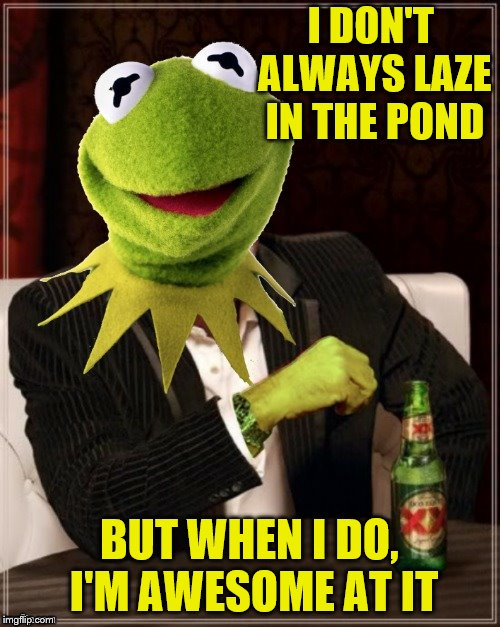 I DON'T ALWAYS LAZE IN THE POND BUT WHEN I DO, I'M AWESOME AT IT | made w/ Imgflip meme maker
