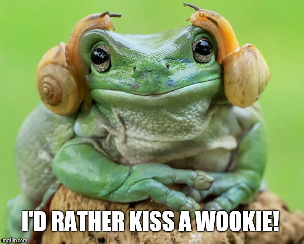 I'D RATHER KISS A WOOKIE! | made w/ Imgflip meme maker