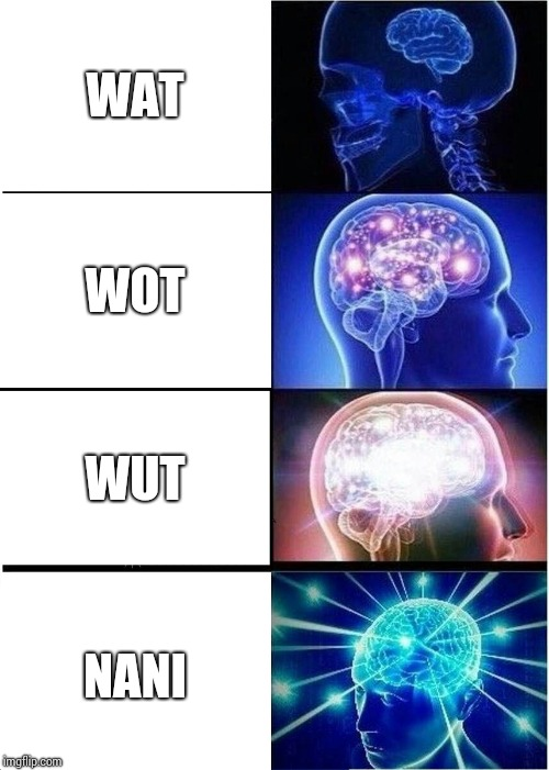 How gamers pronounced what | WAT WOT WUT NANI | image tagged in memes,expanding brain | made w/ Imgflip meme maker