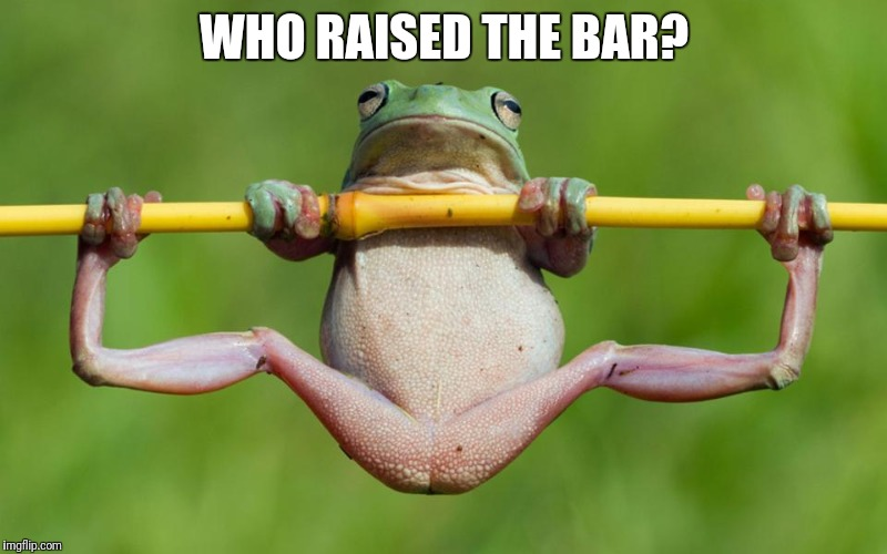 WHO RAISED THE BAR? | image tagged in frog,meme,memes,frog week | made w/ Imgflip meme maker