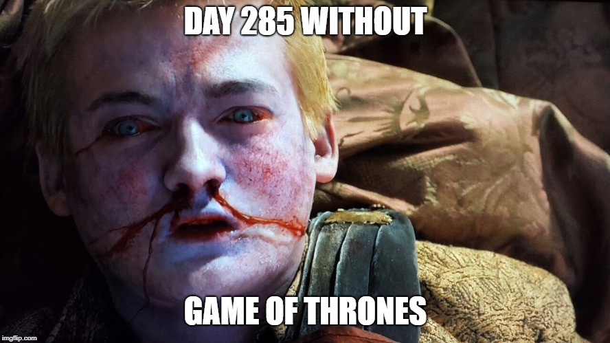 DAY 285 WITHOUT GAME OF THRONES | image tagged in gameofthrones | made w/ Imgflip meme maker