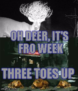 Rate my fro (Frog Week June 4-10, a JBmemegeek & giveuahint event!) | OH DEER, IT'S FRO WEEK THREE TOES UP | image tagged in memes,frog week | made w/ Imgflip meme maker