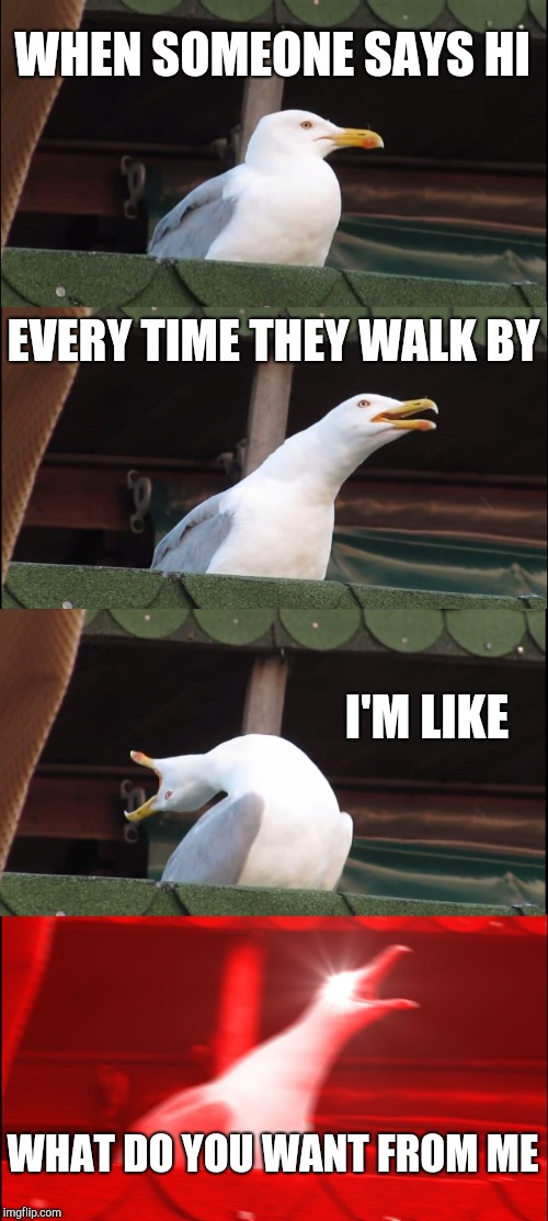 Inhaling Seagull Meme | WHEN SOMEONE SAYS HI EVERY TIME THEY WALK BY I'M LIKE WHAT DO YOU WANT FROM ME | image tagged in memes,inhaling seagull | made w/ Imgflip meme maker