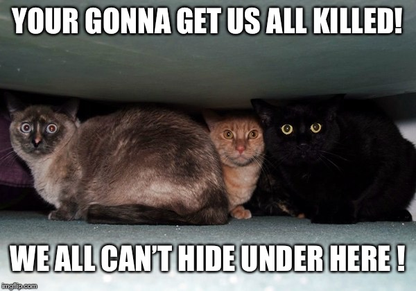 YOUR GONNA GET US ALL KILLED! WE ALL CAN'T HIDE UNDER HERE ! | made w/ Imgflip meme maker