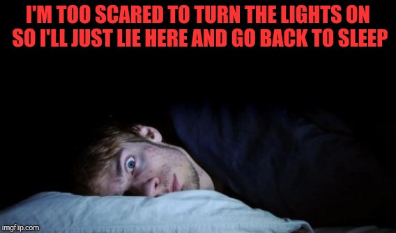 I'M TOO SCARED TO TURN THE LIGHTS ON SO I'LL JUST LIE HERE AND GO BACK TO SLEEP | made w/ Imgflip meme maker