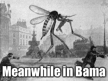 Mosquito Attack | Meanwhile in Bama | image tagged in mosquito attack | made w/ Imgflip meme maker