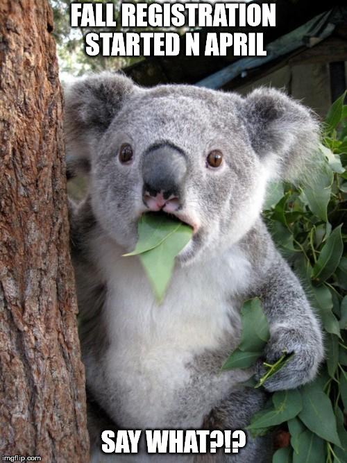 Surprised Koala Meme | FALL REGISTRATION STARTED N APRIL SAY WHAT?!? | image tagged in memes,surprised koala | made w/ Imgflip meme maker