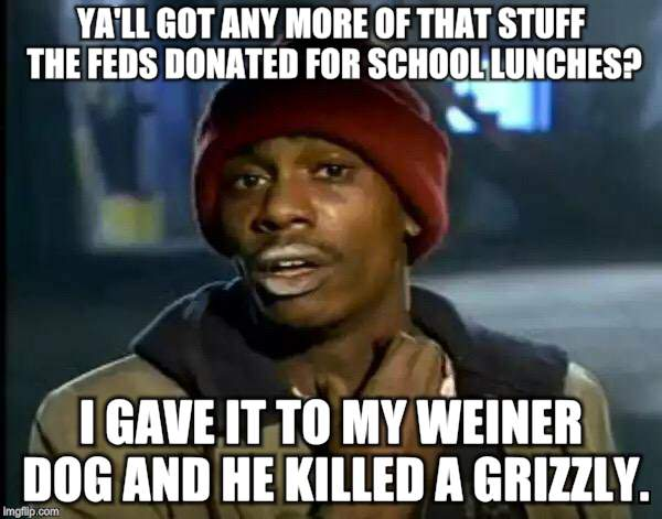 Y'all Got Any More Of That Meme | YA'LL GOT ANY MORE OF THAT STUFF THE FEDS DONATED FOR SCHOOL LUNCHES? I GAVE IT TO MY WEINER DOG AND HE KILLED A GRIZZLY. | image tagged in memes,y'all got any more of that | made w/ Imgflip meme maker