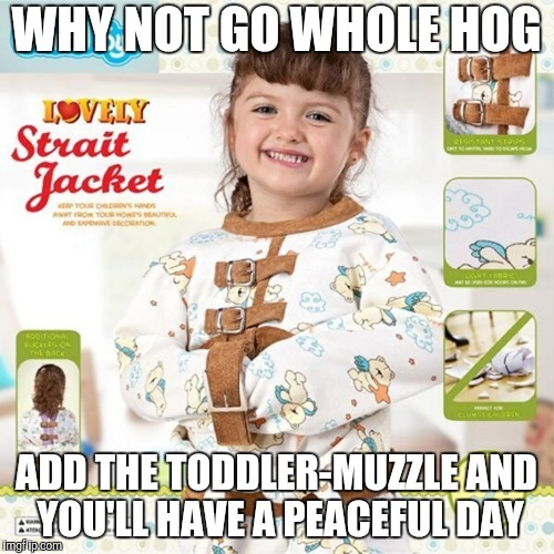 WHY NOT GO WHOLE HOG ADD THE TODDLER-MUZZLE AND YOU'LL HAVE A PEACEFUL DAY | made w/ Imgflip meme maker
