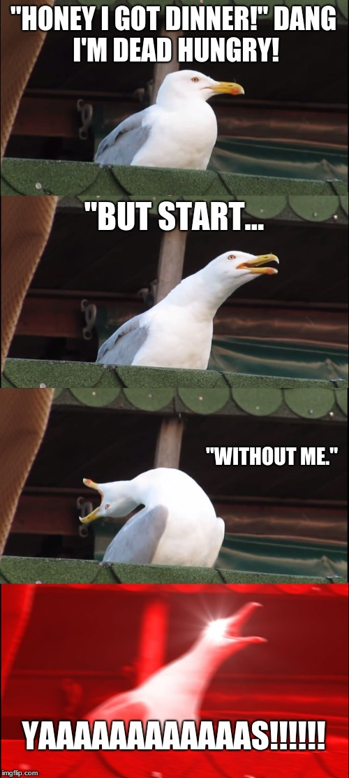 "Inhaling Seagull Meme | ""HONEY I GOT DINNER!"" DANG I'M DEAD HUNGRY! ""BUT START... ""WITHOUT ME."" YAAAAAAAAAAAAS!!!!!! 