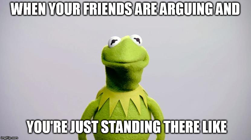 WHEN YOUR FRIENDS ARE ARGUING AND YOU'RE JUST STANDING THERE LIKE | image tagged in kermit the frog,friends,awkward | made w/ Imgflip meme maker