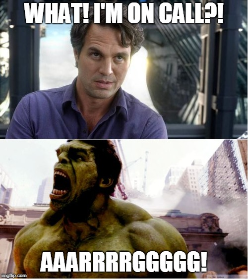 WHAT! I'M ON CALL?! AAARRRRGGGGG! | image tagged in the hulk says no | made w/ Imgflip meme maker