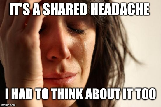 First World Problems Meme | IT'S A SHARED HEADACHE I HAD TO THINK ABOUT IT TOO | image tagged in memes,first world problems | made w/ Imgflip meme maker