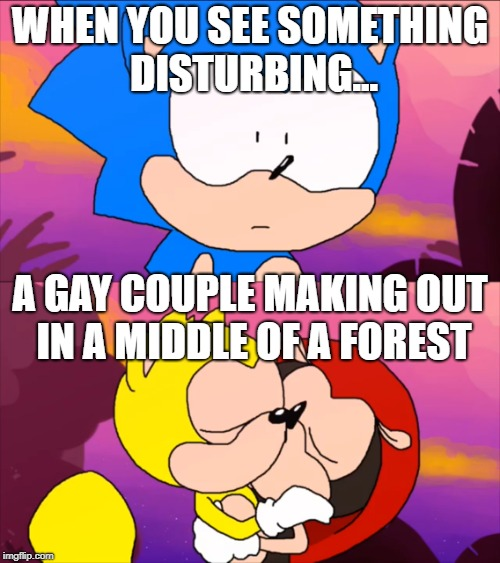 Sonic finds ray and mighty | WHEN YOU SEE SOMETHING DISTURBING... A GAY COUPLE MAKING OUT IN A MIDDLE OF A FOREST | image tagged in dank memes,funny memes,gay | made w/ Imgflip meme maker