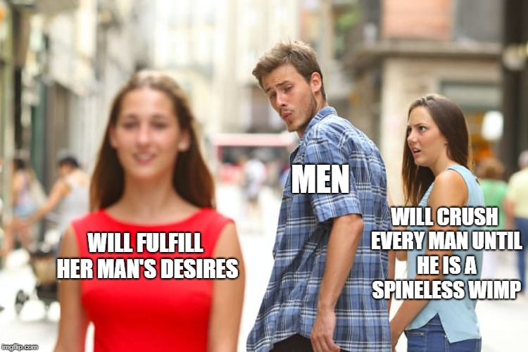 Distracted Boyfriend Meme | WILL FULFILL HER MAN'S DESIRES MEN WILL CRUSH EVERY MAN UNTIL HE IS A SPINELESS WIMP | image tagged in memes,distracted boyfriend | made w/ Imgflip meme maker
