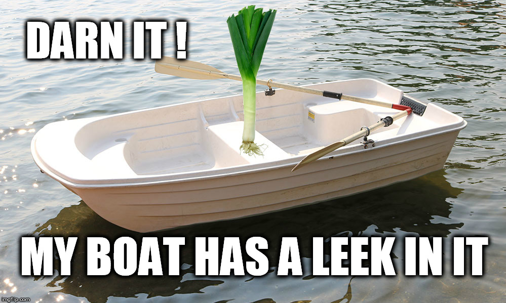 Leeky Boat | DARN IT ! MY BOAT HAS A LEEK IN IT | image tagged in bad pun,pun | made w/ Imgflip meme maker