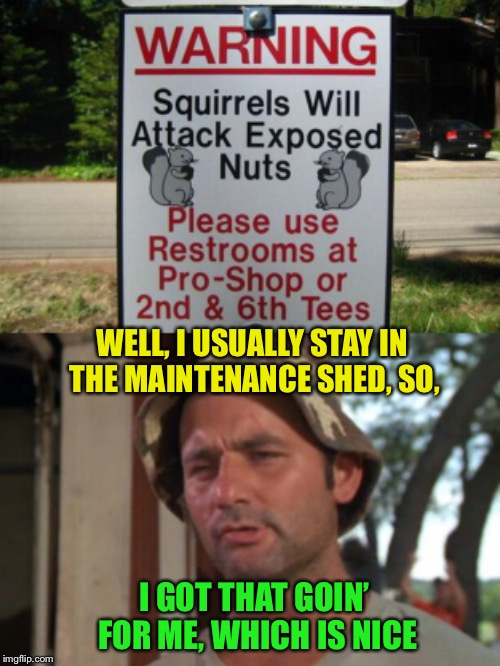 Better watch your golf balls, too! | WELL, I USUALLY STAY IN THE MAINTENANCE SHED, SO, I GOT THAT GOIN' FOR ME, WHICH IS NICE | image tagged in bill murray golf,caddyshack,squirrel,attack,nuts,funny signs | made w/ Imgflip meme maker