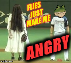 FLIES JUST MAKE ME ANGRY | made w/ Imgflip meme maker