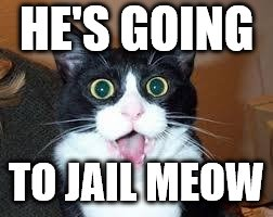 HE'S GOING TO JAIL MEOW | made w/ Imgflip meme maker