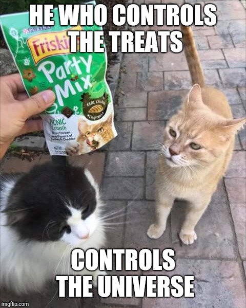kitty | HE WHO CONTROLS THE TREATS CONTROLS THE UNIVERSE | image tagged in cats | made w/ Imgflip meme maker