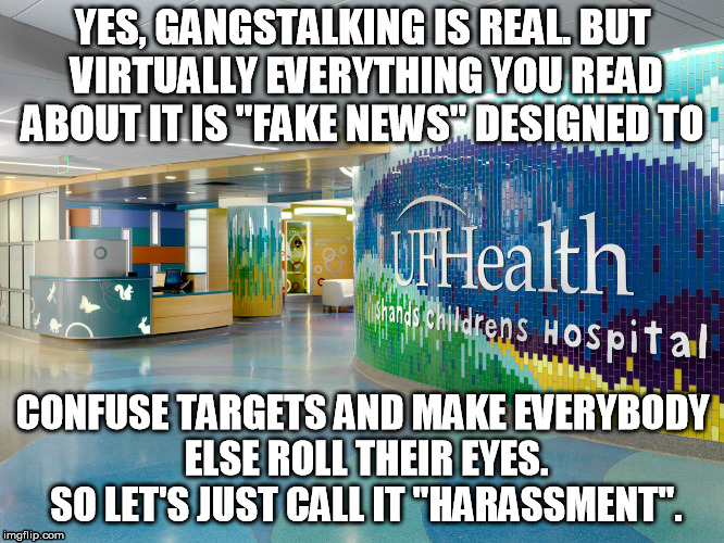 "Gangstalking is Real | YES, GANGSTALKING IS REAL. BUT VIRTUALLY EVERYTHING YOU READ ABOUT IT IS ""FAKE NEWS"" DESIGNED TO CONFUSE TARGETS AND MAKE EVERYBODY ELSE ROL 