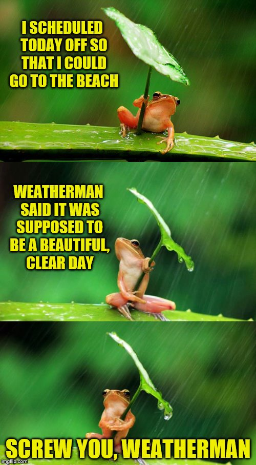He has ONE job.  (Frog Week June 4-10, a JBmemegeek & giveuahint event!) | I SCHEDULED TODAY OFF SO THAT I COULD GO TO THE BEACH SCREW YOU, WEATHERMAN WEATHERMAN SAID IT WAS SUPPOSED TO BE A BEAUTIFUL, CLEAR DAY | image tagged in memes,frog week,jbmemegeek,giveuahint,weatherman,frog with umbrella | made w/ Imgflip meme maker