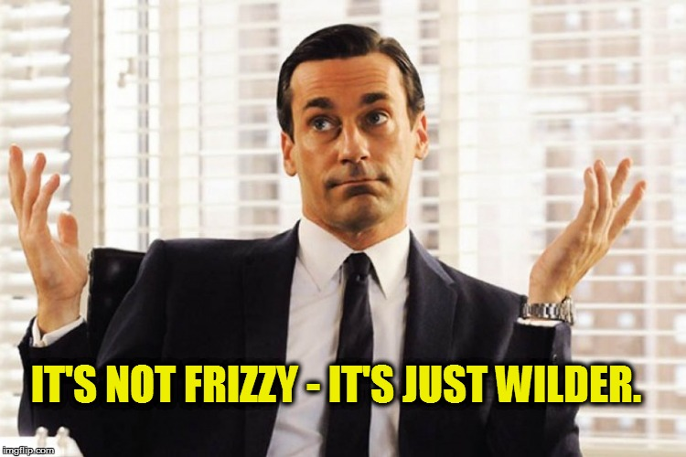 IT'S NOT FRIZZY - IT'S JUST WILDER. | made w/ Imgflip meme maker