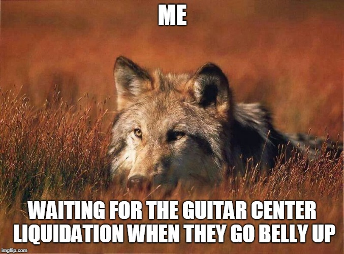 Come on Guitar Center, lay back and let it happen.....  | ME WAITING FOR THE GUITAR CENTER LIQUIDATION WHEN THEY GO BELLY UP | image tagged in guitars | made w/ Imgflip meme maker