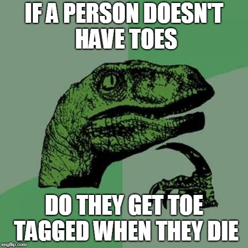 Philosoraptor Meme | IF A PERSON DOESN'T HAVE TOES DO THEY GET TOE TAGGED WHEN THEY DIE | image tagged in memes,philosoraptor | made w/ Imgflip meme maker