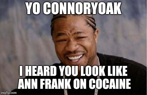 Yo Dawg Heard You Meme | YO CONNORYOAK I HEARD YOU LOOK LIKE ANN FRANK ON COCAINE | image tagged in memes,yo dawg heard you | made w/ Imgflip meme maker
