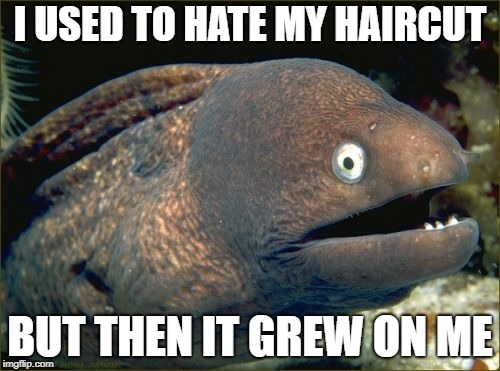 Sorry... I'll see myself out! | I USED TO HATE MY HAIRCUT BUT THEN IT GREW ON ME | image tagged in memes,bad joke eel | made w/ Imgflip meme maker