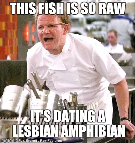 So the raw fish is also lesbian. | THIS FISH IS SO RAW IT'S DATING A LESBIAN AMPHIBIAN | image tagged in memes,chef gordon ramsay,undyne,undertale | made w/ Imgflip meme maker