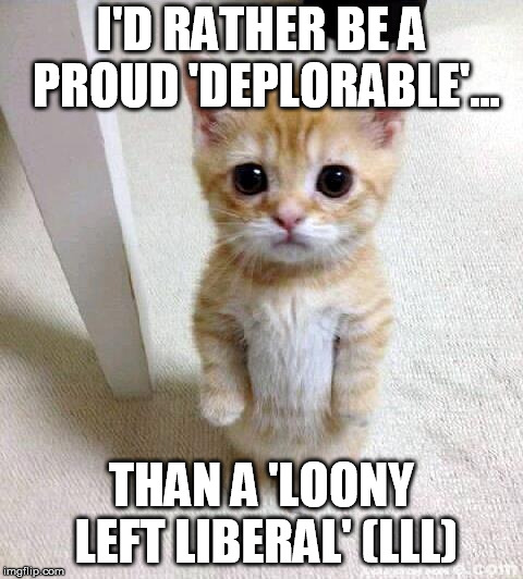 Cute Cat | I'D RATHER BE A PROUD 'DEPLORABLE'... THAN A 'LOONY LEFT LIBERAL' (LLL) | image tagged in memes,cute cat | made w/ Imgflip meme maker