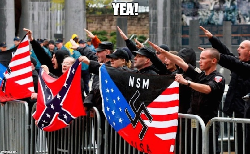 Nazi? | YEA! | image tagged in nazi | made w/ Imgflip meme maker