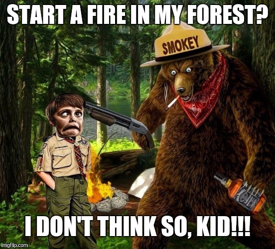 Smokey is done being 'cute' | START A FIRE IN MY FOREST? I DON'T THINK SO, KID!!! | image tagged in smokey the bear drunk,badass bear,funny,non liberal,keep it real | made w/ Imgflip meme maker