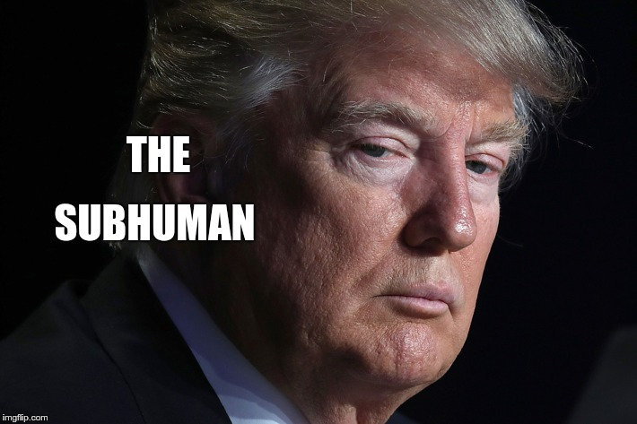 Subhuman | THE SUBHUMAN | image tagged in trump,nazi,coward | made w/ Imgflip meme maker