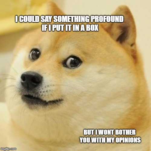 Doge Meme | I COULD SAY SOMETHING PROFOUND IF I PUT IT IN A BOX BUT I WONT BOTHER YOU WITH MY OPINIONS | image tagged in memes,doge | made w/ Imgflip meme maker