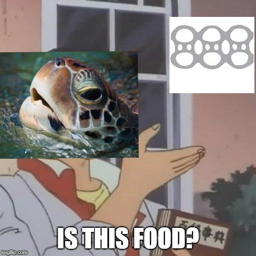 Is this a pigeon? | IS THIS FOOD? | image tagged in is this a pigeon | made w/ Imgflip meme maker