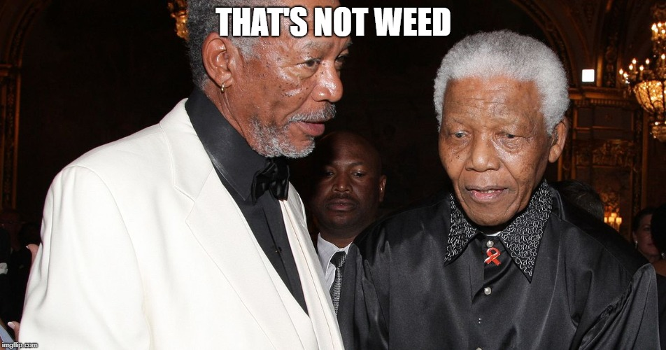The Clone Saga | THAT'S NOT WEED | image tagged in memes,morgan freeman,nelson mandela,clone,weed,illuminati | made w/ Imgflip meme maker