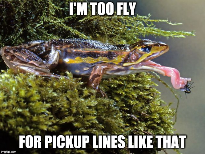 I'M TOO FLY FOR PICKUP LINES LIKE THAT | made w/ Imgflip meme maker