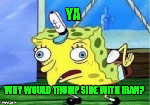 Mocking Spongebob Meme | YA WHY WOULD TRUMP SIDE WITH IRAN? | image tagged in memes,mocking spongebob | made w/ Imgflip meme maker