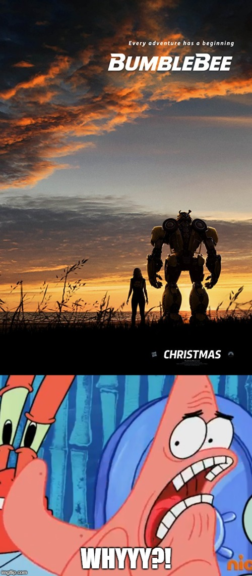 WHYYY?! | image tagged in patrick star whyyy,transformers | made w/ Imgflip meme maker