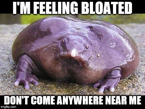 I'M FEELING BLOATED DON'T COME ANYWHERE NEAR ME | made w/ Imgflip meme maker