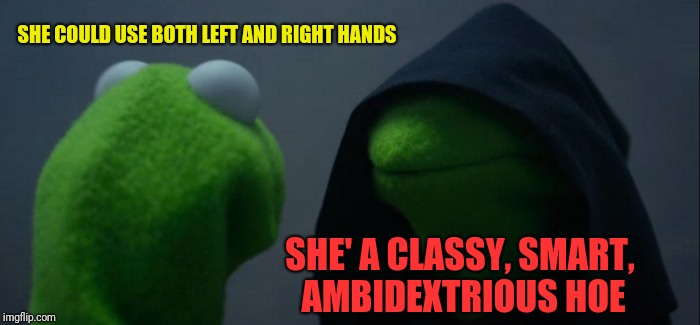 Evil Kermit Meme | SHE COULD USE BOTH LEFT AND RIGHT HANDS SHE' A CLASSY, SMART, AMBIDEXTRIOUS HOE | image tagged in memes,evil kermit | made w/ Imgflip meme maker